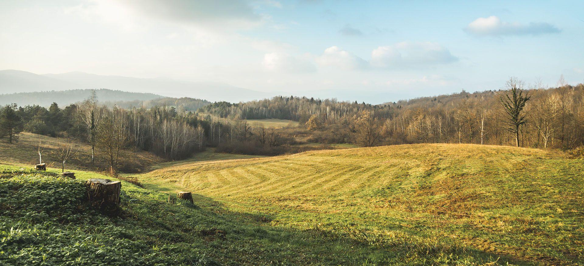 Jesen v Krajinskem parku Lahinja, avtor: Uroš Raztresen