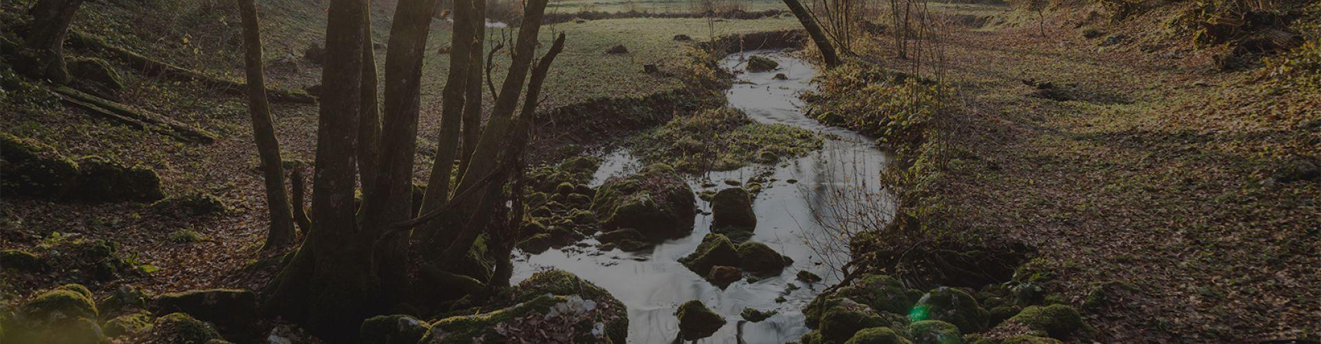 Izvir reke Lahinje