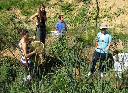 Aktivno raziskovanje rastlinskih in živalskih habitatov, avtor: DBT